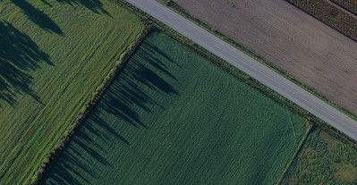 Grundstück-verkaufen dunkel (1)